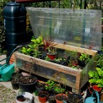 Wszystko na temat skrzyń ogrodowych