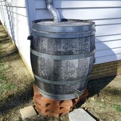 Zbiornik na deszczówkę domowej roboty, stworzony ze zwykłej drewnianej beczki. W górnej klapie beczki wywiercono otwór, przez który wpuszczono rynnę doprowadzającą deszczówkę