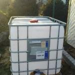 Pojemniki z jasnego, przepuszczalnego dla promieni słonecznych tworzywa sztucznego to idealne środowisko do rozwoju glonów