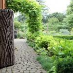 Gromadzenie deszczówki w ogrodzie